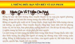 Nguon-goc-va-y-nghia-phong-thuy-cua-rong