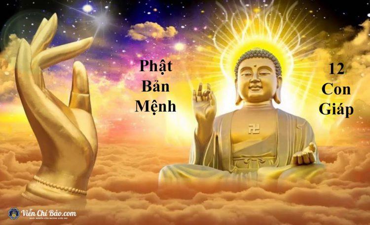 phat-bản-menh-la-gom-co-8-vi-phat-lam-ton-chu-quan-ly-12-con-giap
