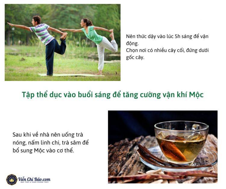 tang-cuong-tap-the-duc-uong-tra-nam-linh-chi